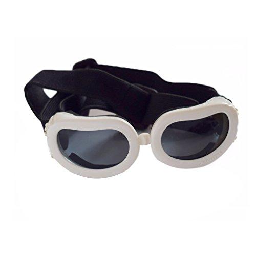 Minzhi Pet UV-Schutz Sonnenbrillen Hund Katze Anti-Fog Anti-Wind Brille Welpen Augenschutz Schutzbrille Weiß