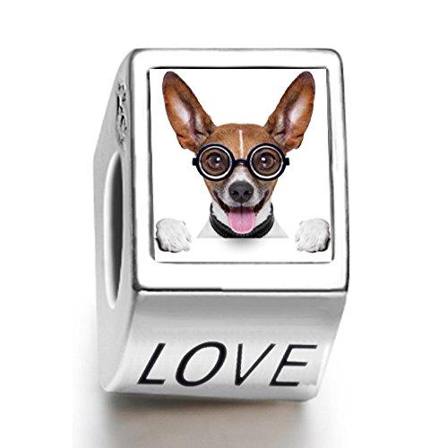 Rarelove Sterling Silver Cute Chihuahua Dog with Glasses Animal Photo Love European Charm Bead
