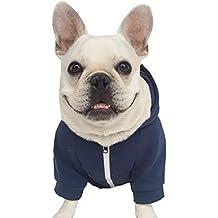 suchergebnis auf f r franz sische bulldogge
