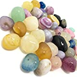 KITCHINDRA Natural Multi Colored Pebbles Decorative Stones for Home Decor (Natural Multi Color, 950g)