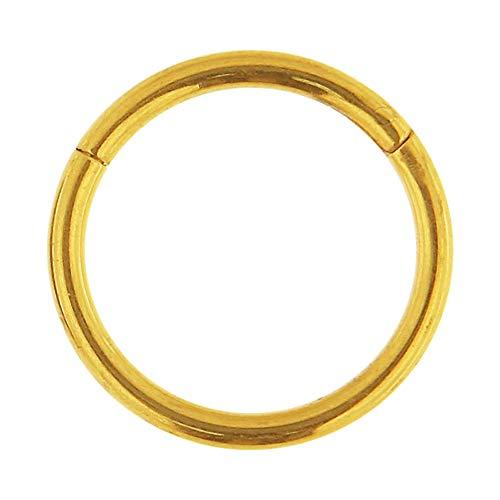Gold eloxiert 16 Gauge - 10MM Durchmesser 23 Grad Titan geschliffenes Segment Nasenring Septum Piercingschmuck