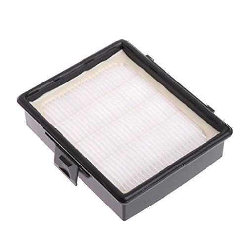 JENOR - Filtro HEPA para aspiradora compatible con Samsung DJ97-00492A SC6520
