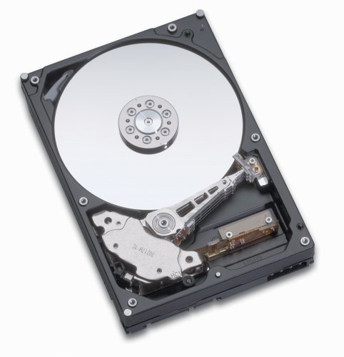 Hitachi Global Storage Technologies (Hitachi Deskstar T7K500 HDT725040VLAT80, IDE, 400 GB)