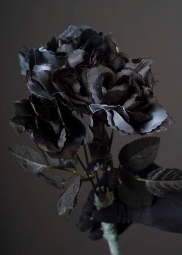 Halloween Party Gothic Black Roses