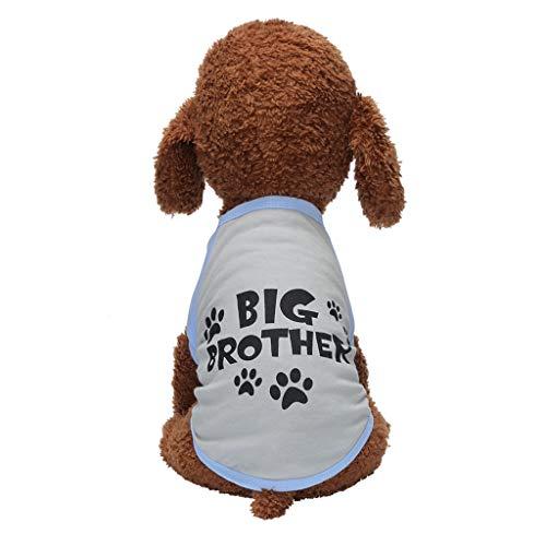 Männliche Kostüm Service Uns - Cenday Neue Buchstabentatze Druckt Haustier-T - Shirt Lässige Mode Einfache Leichte Haustier Jacke Hundeshirt Bequeme Und Atmungsaktive Mode-Hundekleidung Für Den Herbst