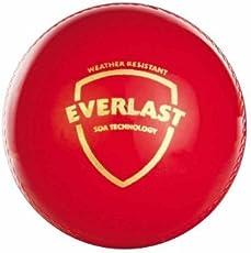 SG Everlast Cricket Ball (Red)