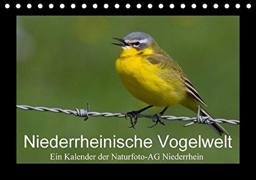 Niederrheinische Vogelwelt (Tischkalender 2018 DIN A5 quer): Große und kleine Vögel am Niederrhein (Monatskalender, 14 Seiten ) (CALVENDO Tiere) ... (Hrsg.) Naturfoto-AG Niederrhein, Gudrun