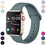 Hamile Correa Compatible con Apple Watch 42mm 44mm, Correa de Repuesto de Silicona Suave para Apple...