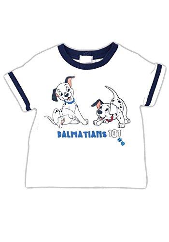 Bear Essentials Clothing.. T-Shirt - Bébé (Garçon) 0 à 24 Mois - Bleu -