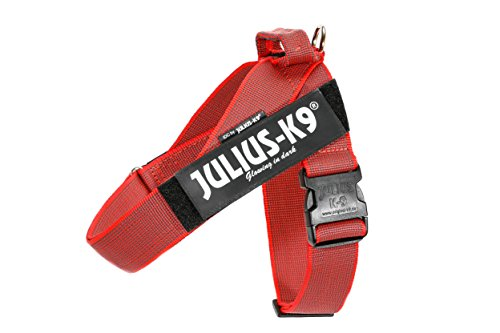 JULIUS K-9 Pettorina a fascia Color & Gray, taglia: 2, colore: rosso