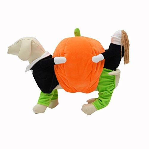 UEETEK Haustier Bekleidung Lustige Kürbis-Kostüm für Welpen Katze /Halloween Karneval Kostüm Hunde Kleidung size M