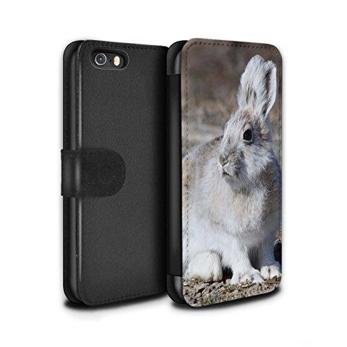 stuff4-pu-pelle-custodia-cover-caso-portafoglio-per-apple-iphone-se-bianca-artico-lepre-artico-anima
