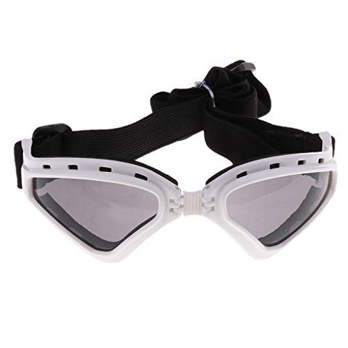 Homyl Hundeschutzbrille Hundebrille Sonnenbrille UV Augenschutzbrille Wasserdicht Brille für Kleine bis Große Hunde - Weiß
