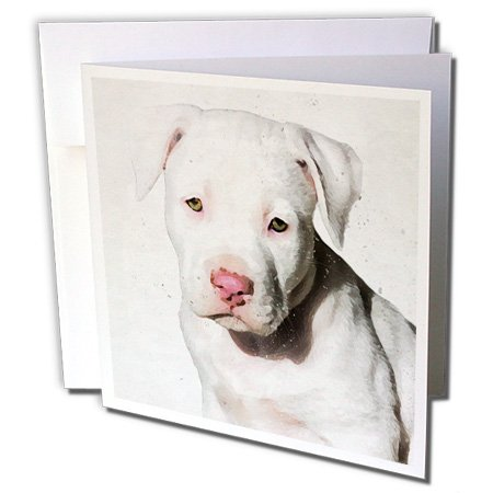 "3dRose gc_245337_5 6 x 6-Inch""American Staffordshire Terrier Pit Bull Puppy Watercolor"" – Greeting Card"