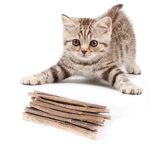 Gutsbox 7X Katzenminze Sticks, Katzenspielzeug, Natürliche Zahnpflege für Kätzchen Hilft Mundgeruch und Zahnstein zu Reinigen (7 Sticks)