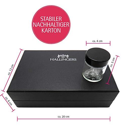 41HACN2Eo1L - Hallingers 5er Premium-Grill-Gewürze als Geschenk-Set (95g) - Grilllust (MiniDeluxe-Box) - zu Sommer Grillen Für Ihn