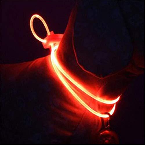 zezego Collar de seguridad para perros LED - Collares de seguridad para mascotas, luminosos y ajustables