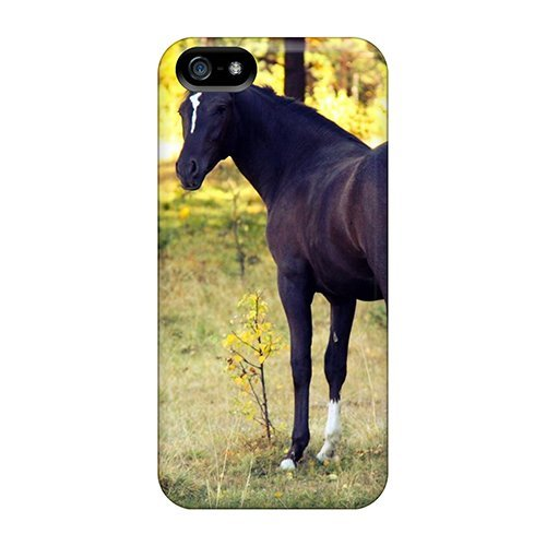 new-magnificent-horse-inn-autumn-forest-tpu-skin-case-compatible-with-iphone-5-5s