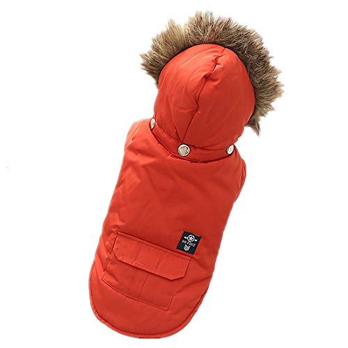 PZSSXDZW Haustierhundekostüm Daunenjacke mit Kapuze Herbst und Winter Heimtierbedarf Hundekleidung Zweibeinige Kleidung,rot,XS (Geist, Halloween Kostüm Girl Spider)