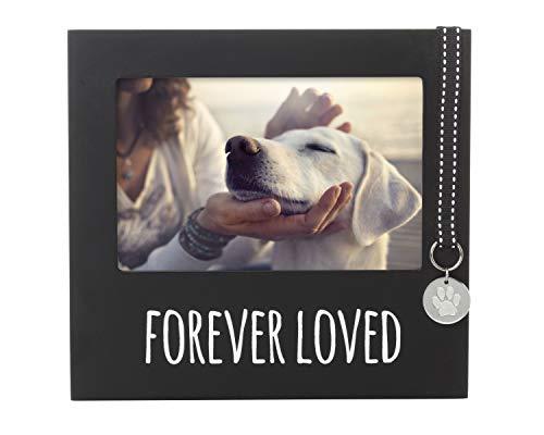 Pearhead Gedenkbilderrahmen für Haustiere, Eingerahmtes Erinnerungsschild, Halsband, für Immer geliebtes Hausstier, Forever Loved pet Memorial Collar Frame, schwarz
