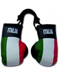 Minigants de boxe Motif drapeau de l'Italie