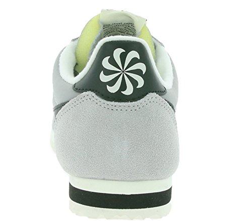 Nike 844855-001, Chaussures de Sport Homme, Gris Argenté
