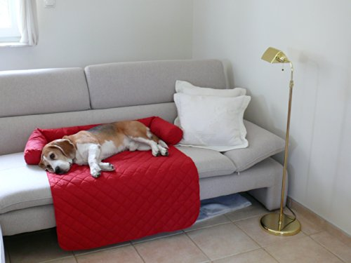 Leo perro cama sofá L 85x 100cm rojo Sillón