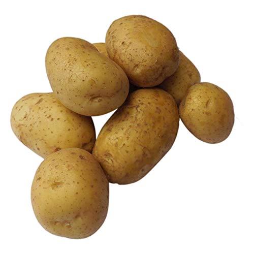 Tepenhof Kartoffeln Belana früher Linda festkochend super lecker 12,5kg ...
