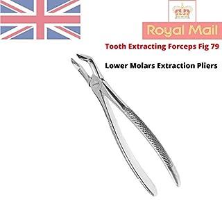 Zamaha UK Zahnextraktionszange Feige 79, untere Molarenzähne