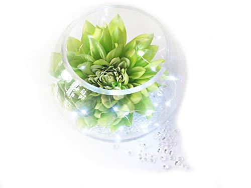 Grande Homestreet® Dahlia Poisson Bol Vase Fleur écran avec cristaux et LED à piles lumières
