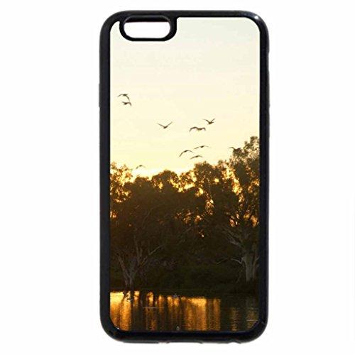 iPhone 6S / iPhone 6 Case (Black) Flock of Pelicans