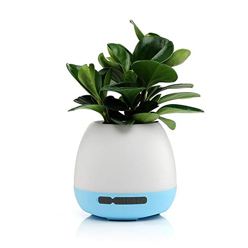 LXDER Drahtloser Bluetooth-Lautsprecher Tragbarer Bunter Nachtlicht-Geschenk-Intelligenter Noten-Induktions-Musik-Blumentopf-Ton (Blumentopf Menschen)