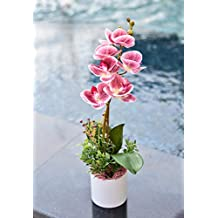 YATAI Real Touch Artificial Orchid Flowers In Plastic Pot With Moss Grass Arrangement for Multiple Occasions – Artificial Plants – Fake Flowers – Orchid Branches – Artificial Flower