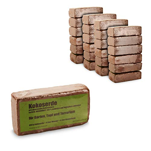 yayago Humusziegel - 24x 650g Kokoserde -gepresste Blumenerde aus Kokosfasern - torffrei, ungedüngt, 100{9c86555191369a7af526a523fab913e6edc4682ae41219ee22f48d553fff2524} natürlich und biologisch abbaubar - für Garten, Topf und Terrarium 24x 650g