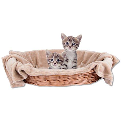 Bestlivings Haustierdecke Katzendecke Kuscheldecke Tierdecke, Angenehm und Super Weich in Vielen Verschiedenen Farben erhältlich (60x80 cmbeige - Hellbraun)
