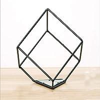 xiangshang shangmao Irregular Glass Geometric Terrarium Box Tabletop Succulent Plant Planter (Square)