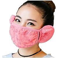 Hustar Ohrenschützer und Gesichtsschutz für Damen, für den Winter, zum Radfahren und Wandern, dickes Material,... preisvergleich bei billige-tabletten.eu