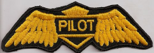 Piloten Aufnäher - Golden Wings US Air Force - Pilot - Luftwaffe - Flieger -