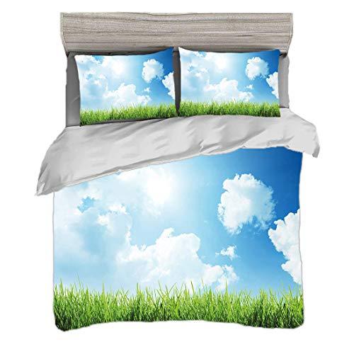 Bettwäscheset (240 x 260cm) mit 2 Kissenbezügen Himmel Digitaldruck Bettwäsche Sunny Day Bild mit grünem Gras Sonnenstrahlen Wolken Schönheit der Natur Land Wiese,Pale Redwood Persian Orange Gelbgrau,
