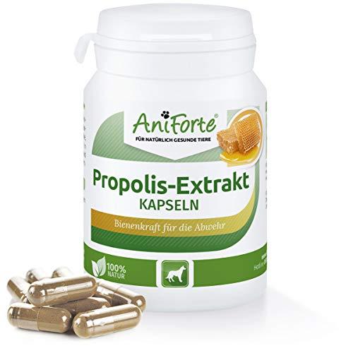 AniForte Propolis-Extrakt Kapseln 50 STK. Reine Bienenkraft- Naturprodukt für Hunde
