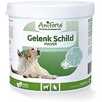 AniForte Articulación Cartel 250g para Gatos y Perros, Segura Movimiento de Libertad, con Verde lipp Conchas de Polvo, OPC y Ginkgo