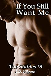 If You Still Want Me (The Stables Book 3)