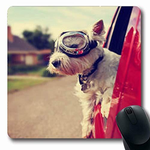 Luancrop Mousepads Straße Nette Westie Westhochland-Reitterrier-Schutzbrillen-Tier-Hundefreund-längliches Spiel Mousepad rutschfeste Gummimatte (Tier-schutzbrillen)