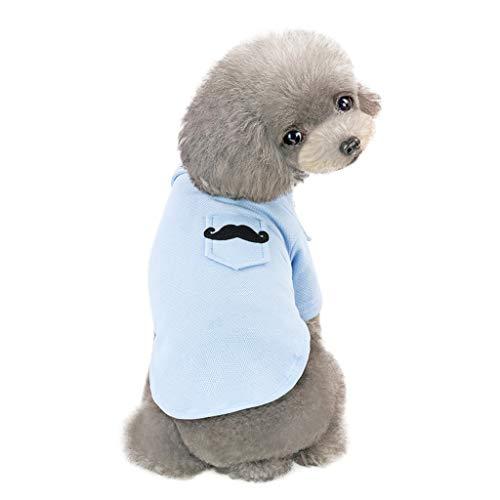 EUZeo Schön Einfarbig Haustierbekleidung Kleidung für Kleiner Hund Kleine Katze Haustierkleidung Sweatshirts Pullover Hündchen Kätzchen Sommer Frühling Kurzärmelig T-Shirts Pulli mit Tasche