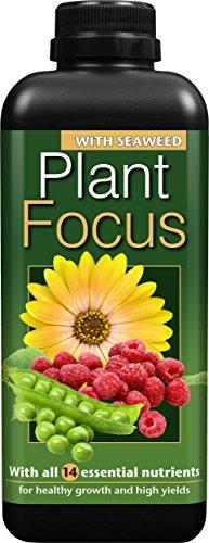 plant-focus-1-litre-liquid-plant-fertilizer