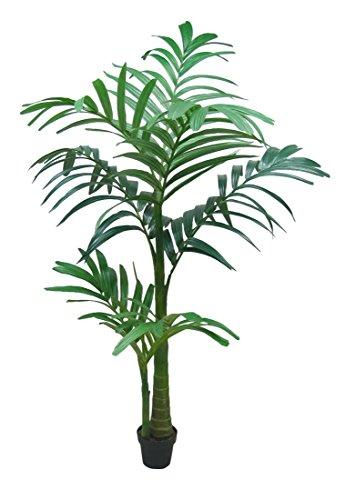 Dekoflower - Bangalowpalme ca. 210 cm