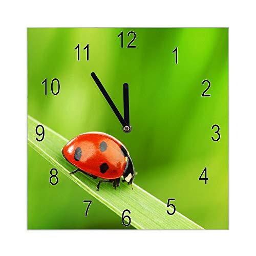 banjado Wanduhr aus Glas | geräuscharme Uhr 30x30cm | Glasuhr für Küche, Büro, Wohnzimmer, Kinderzimmer | Motiv Marienkäfer