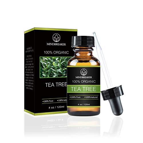 Teebaum ätherisches Öl - 100% rein & natürlich therapeutisch - Bestes Geschenkpaket für Männer und Frauen (4 oz) -