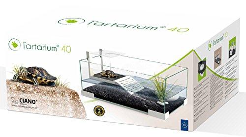 Ciano Tartarium 40 - Terrario con rampa para Tortugas y Reptiles