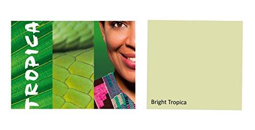 Alpina Colorful World Innenfarbe, 2,5 L. Bright Tropica, Hellgrün, matt